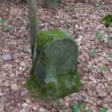"Denkmal ""Erschlagene Frau"" im Tharandter Wald"